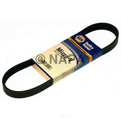 Cummins NAPA//BELTS /& HOSE-NBH 25081264 Serpentine Belt-DIESEL