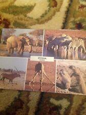 Postcard Used Etosha Namibia Okaukuejo Franked Dg25