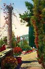 CPA MONACO les jardins exotiques