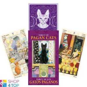 Paien-Chats-Mini-Tarot-Cartes-Pont-Esoterique-Divination-lo-scarabeo-Neuf