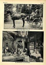Graf und Gräfin Minotto(Agnes Sorma) im Dogcart Die Bibliothek Villa Minotto1912