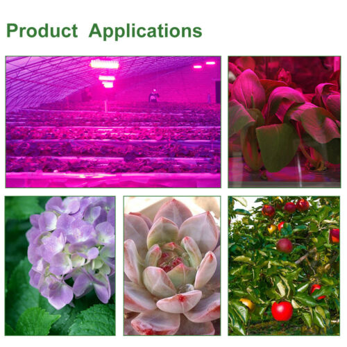 20W30W50W//70W Full Spectrum LED COB Chip Grow Light Plant Growth Lamp 220V 240V