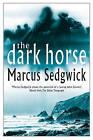The Dark Horse by Marcus Sedgwick (Hardback, 2002)