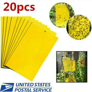 20Pcs-Sticky-Fly-Trap-Paper-Yellow-Traps-Fruit-Flies-Insect-Glue-Catcher
