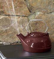 3 Quart Cast Iron Steamer Kettle / Humidifier Kettle