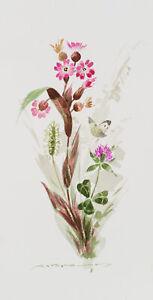 Blumenstueck-mit-Wiesenblumen-Klee-und-einem-Falter-um-1900-Aquarell