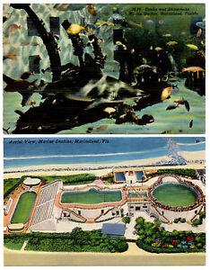 MARINELAND-Marine-Studios-Florida-Lot-of-2-Vintage-Linen-Postcards-Aerial-View