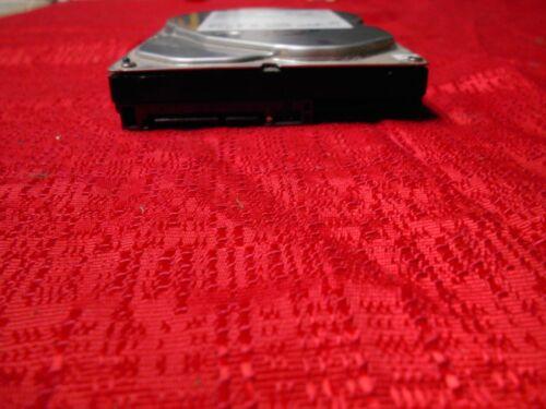 "Hitachi Deskstar P7K500 HDP725016GLA380 160 GB,Internal,7200 RPM,3.5/""..."