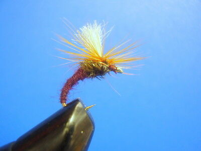 056 6 x shortshank goldhead marabou Bloodworm mouches taille 12 par aquastrong