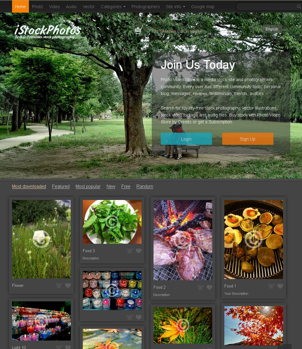 Professional Stock Photography Website 2