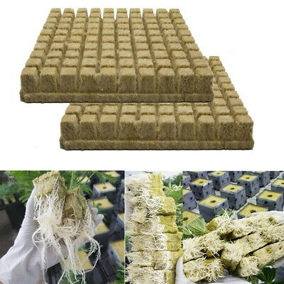 50//100 Rock-wool Block Hydroponic Rockwool Cube Propagation Cloning Seed Raising