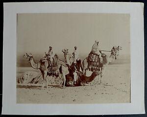 Photo-Egypte-Albumen-Desert-and-camels-1880