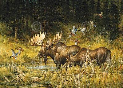 Larry Fanning October Rendezvous Animal Moose Duck Print Poster 19x13