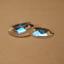 Optical-glass-flat-convex-lens-diameter-50mm-focal-length-80-focal-length-exper thumbnail 1
