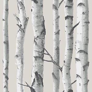 NUWALLPAPER-BIRCH-TREE-PEEL-amp-STICK-WALLPAPER-GREY-NU1650-FINE-DECOR-NEW