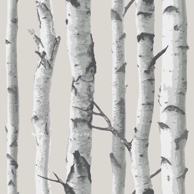 NUWALLPAPER BIRCH TREE PEEL & STICK WALLPAPER GREY NU1650 FINE DECOR NEW
