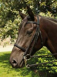 Heritage-English-Leather-Double-Horse-Bridle-All-Sizes-Havana-Black