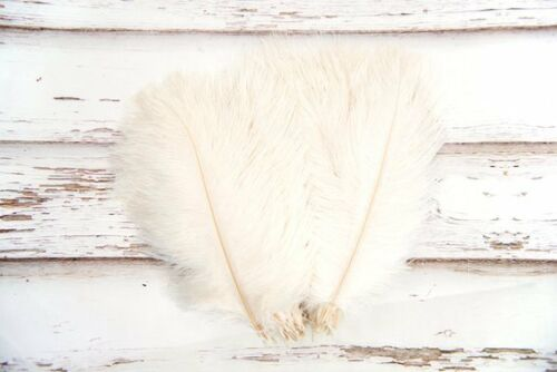 Pequeño Apagado Blanco//Crema Esponjoso Plumas de avestruz