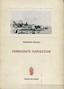 PASSEGGIATE-NAPOLETANE-FERDINANDO-FERRAJOLI-EDIZIONI-DEL-DELFINO-GA348