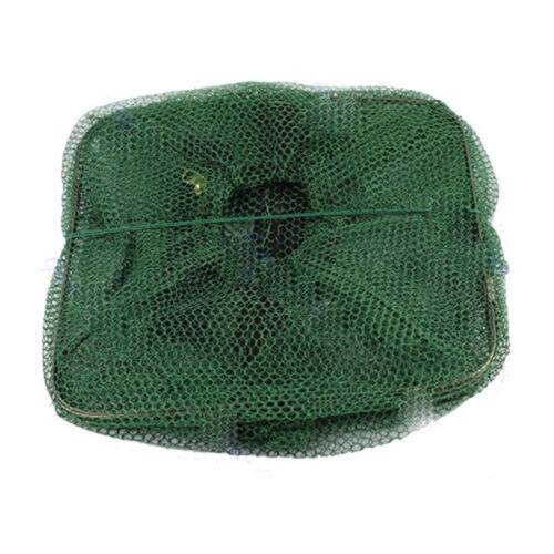 faltbare Fishing Net Fisch Krabben Minnow Garnelen Köder Cast Mesh Trap  ZP