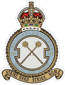 Royal-Air-Force-RAF-349th-Squadron-Decal-Sticker