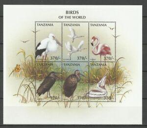Tanzanie-Oiseaux-Cigogne-Perroquet-Owl-Parrot-Bird-Papagei-Eulen-Vogel-1997