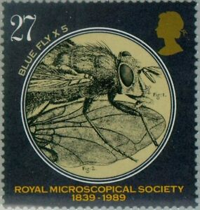 GREAT-BRITAIN-1989-Royal-Microscopical-Society-Blue-Fly-x-5-MNH-1286
