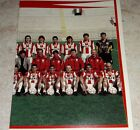 FIGURINA CALCIATORI PANINI 1998/99 VICENZA SQUADRA ALBUM 1999
