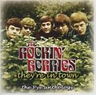 The Rockin Berries They're in Town 2 X CD Set Pop Rock Music Album