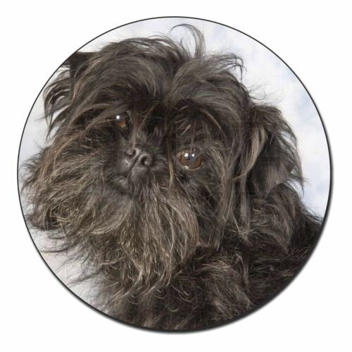 Affenpinscher Dog Fridge Magnet Stocking Filler Christmas Gift AD-AP1FM