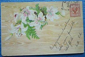 Fiori Liberty.Art Nouveau Cartolina 36 Liberty Fiori Viaggiata 12 17 Ebay