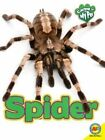 Spider by Michelle Lomberg (Paperback, 2015)