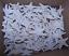 """100 White Bleached  KNOBBY STARFISH WEDDING CRAFT  2/"""" Item # wk2-100"""