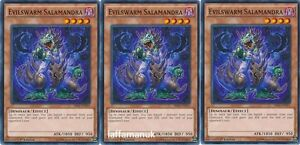 3-x-Evilswarm-Salamandra-SR04-EN015-Common-1st-Edition-Yu-Gi-Oh-Cards