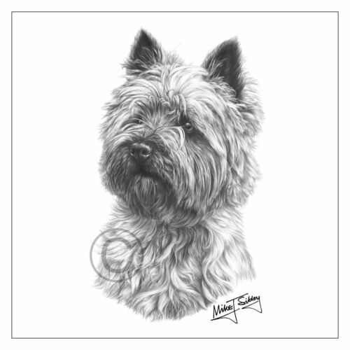 Mike Sibley Cairn Terrier dog breed greeting card happy birthday thank you mum