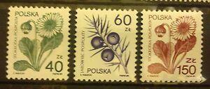 POLAND STAMPS MNH Fi3066-67,87 Sc2917-19 Mi3214-15,35 - Medical plants, 1989, ** - Reda, Polska - POLAND STAMPS MNH Fi3066-67,87 Sc2917-19 Mi3214-15,35 - Medical plants, 1989, ** - Reda, Polska