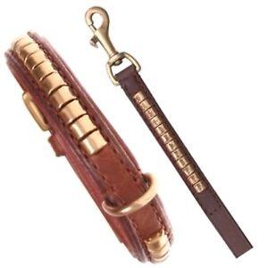Ensemble collier et laisse Rangée Collier en cuir Staffordshire Bull Terrier brun 45cm