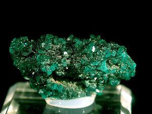 DIOPTASE-FINE-Rare-Mineral-Specimen-Crystal-Tsumeb-mine-Tsumeb-Namibia