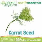 earthessence CARROT SEED~ CERTIFIED 100% PURE ESSENTIAL OIL ~ Aromatherapy Grade