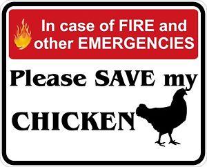 In-Case-of-Fire-Save-My-Chicken-Decals-Stickers