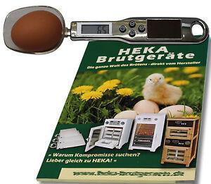 Loeffel-Eierwaage-zur-Gewichtskontrolle-von-Bruteiern-HEKA-1x-Art-95046