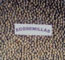 Okra ROJA, quimbombo, gombo, CURATIVA, 70 semillas ECOLÓGICAS, COMPRA 2 ENVÍO 3