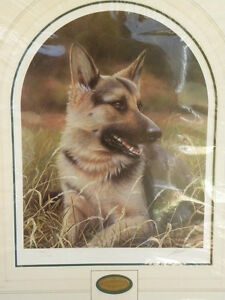 German-Shepherd-Print-John-Silver-Ltd-Edn-230-750