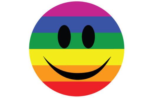 Gay Pride Smiley Face Sticker Car Bumper Top Quality Sticker