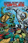 Teenage Mutant Ninja Turtles Classics: Volume 9 by Jim Lawson (Paperback, 2015)