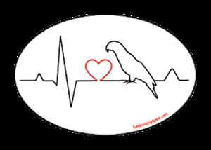 Bird Heartbeat Love Euro Magnet