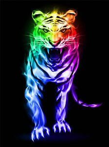 ART-PRINT-POSTER-PAINTING-DRAWING-MULTICOLOURED-NEON-TIGER-ROAR-LFMP0870