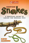 Keeping Snakes by David Manning (Paperback, 2000)