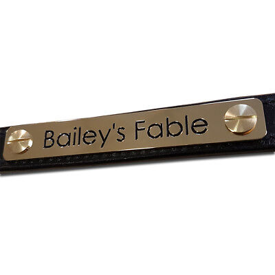 Personalised headcollar nameplate 100mm x 20mm Choice of font