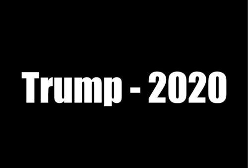 """2x Donald Trump /""""Trump-2020/""""  Vinyl window Decal Sticker Wall Bumper Window Fun"""